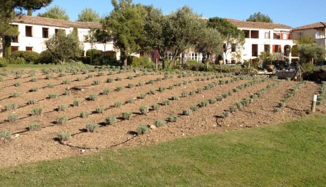 Jardinier paysagiste golf de pont royal for Travaux de paysagiste