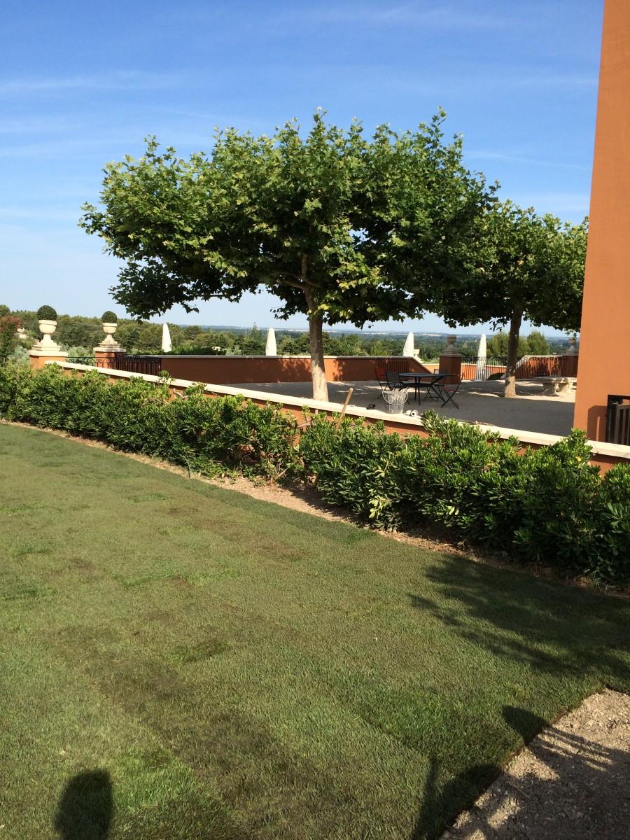 Jardinier paysagiste venelles sur la pose d 39 un gazon en for Jardinier paysagiste
