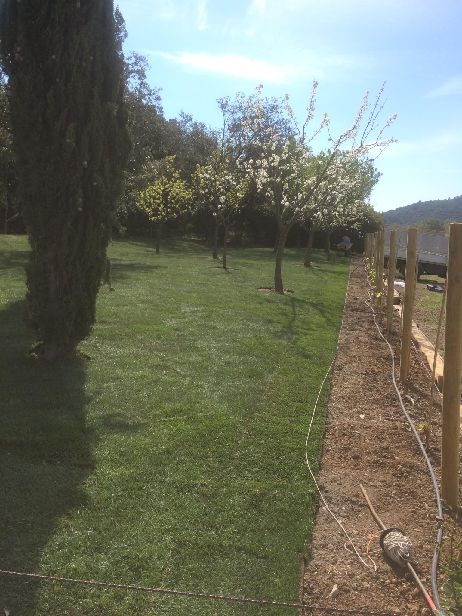 Jardinier Paysagiste Aix En Provence Pose D 39 Un Gazon En