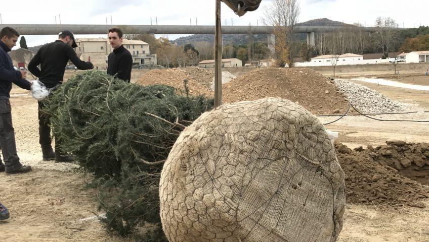 Travaux de plantation paysagiste aix en provence for Travaux de paysagiste